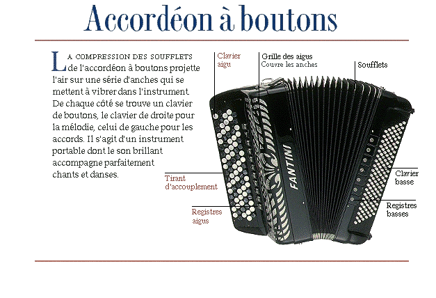 Accordéon - 1